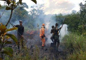 Estiagem no Amapá começa com queda de 50% de focos de incêndio, diz Iepa