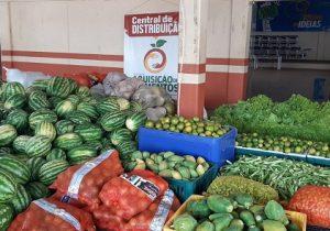 Agricultores que perdiam produção têm alimentos comprados e doados a pessoas carentes