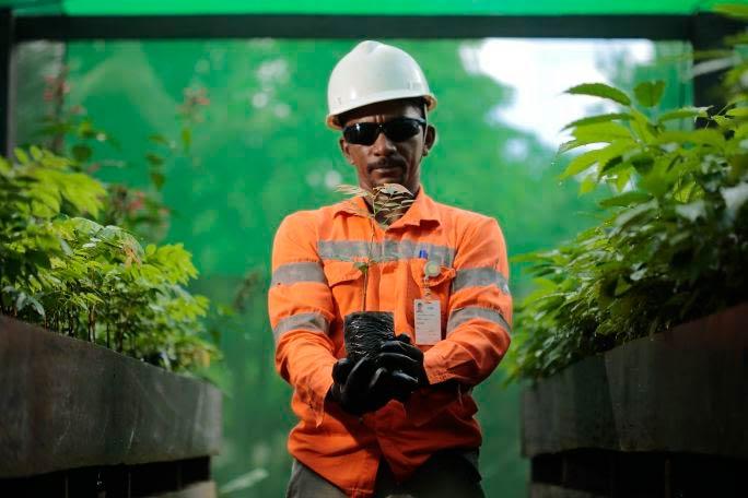 Após ações de preservação, mineradora do Amapá tem 'Selo Sustentabilidade' renovado