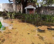Abandonado, espaço pet ao lado de cemitério acumula água e lixo