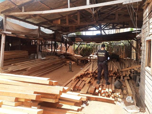 Madeireiros clandestinos são presos no sul do Amapá